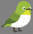 https://4.bp.blogspot.com/-rWqsZt0T9DI/VMItrbRsdtI/AAAAAAAAqw0/5nNB8-0mJ9k/s800/bird_mejiro.png
